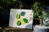 magneten tropische bladeren