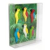 papegaai magneetjes