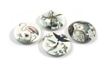 Vogel magneten 'Bird' van glas - set van 4 stuks