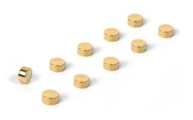 Magneet Steely - set van 10 - goudkleurig