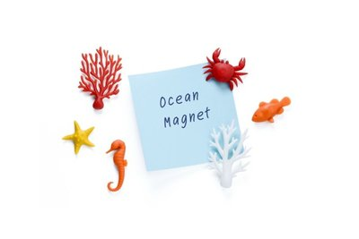 save the oceaan zeedieren magneten