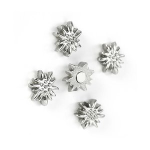 edelweiss magnetenq