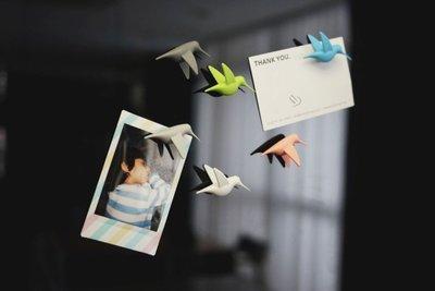 kolibrie magneten pastel
