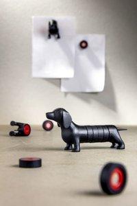 teckel magneten