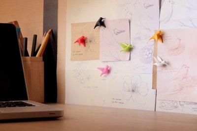 vogel magneten kolibrie